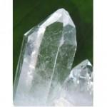 silicium-organique-virsil